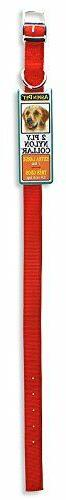 Petmate ASPEN PET PRODUCTS 21366 Nylon Dog Collar, 1 by 24-I