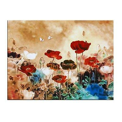 blooming poppies large colorful flowers pictures paintings