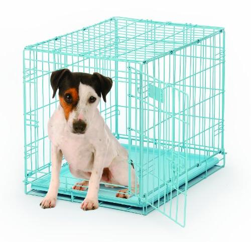 BRAD-568642-MidWest iCrate Dog Crate