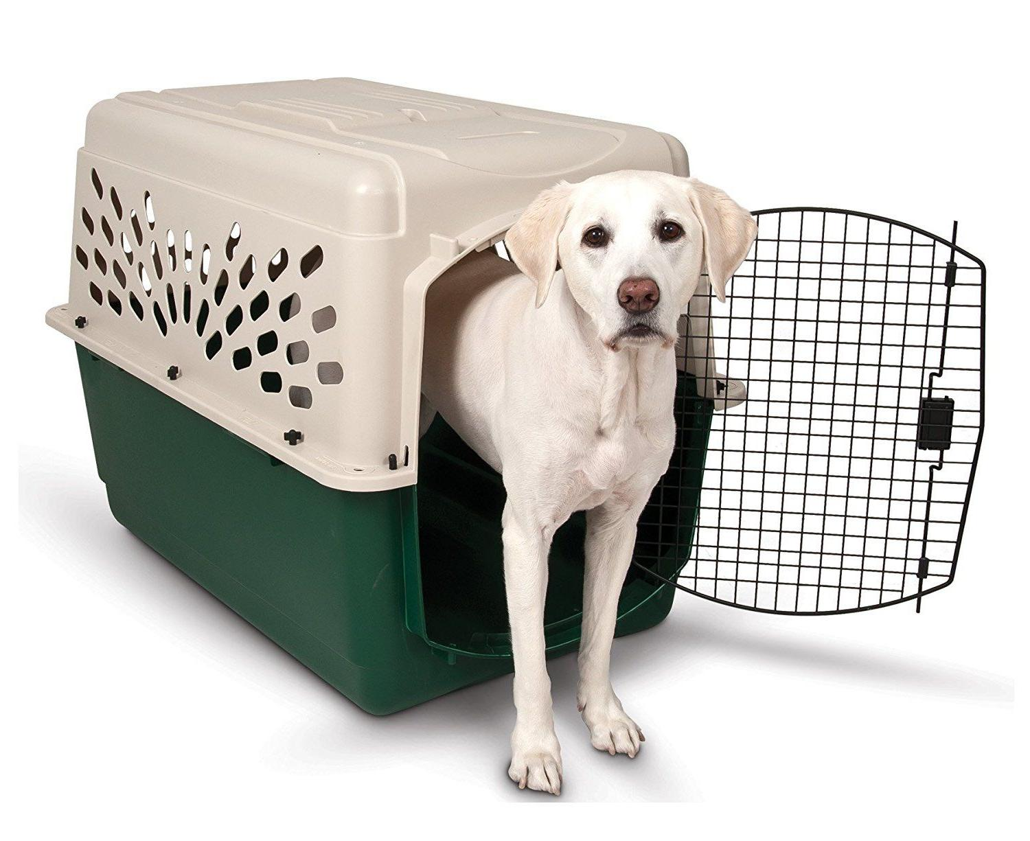 Dog Crate Cat Pet Steel to