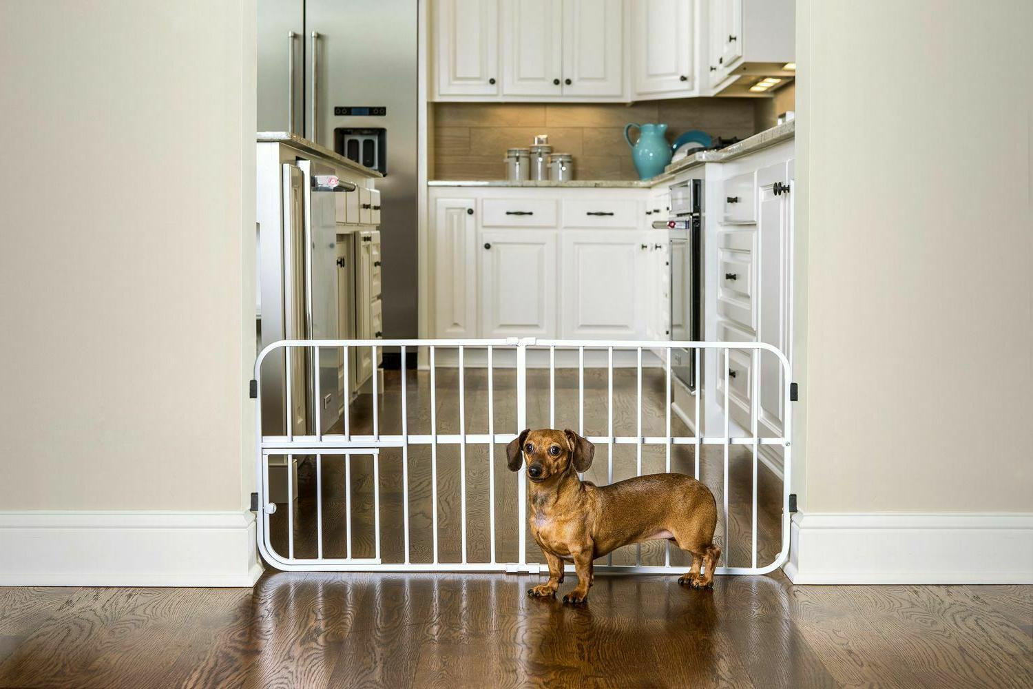 lil tuffy expandable gate with small pet