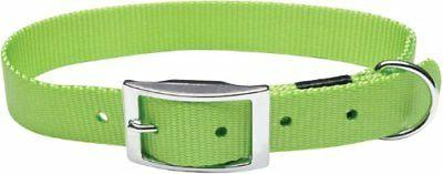 new nylon single ply dog collar