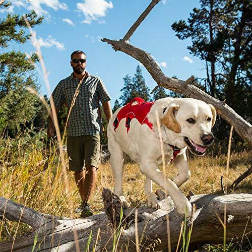 RUFFWEAR Web Master, Multi-Use Support Harness, Hiking Running, Service Working, Everyday Wear, Red Currant,