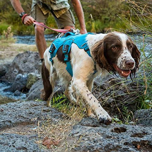 RUFFWEAR Multi-Use Hiking and Service and Wear, Red Currant, Medium