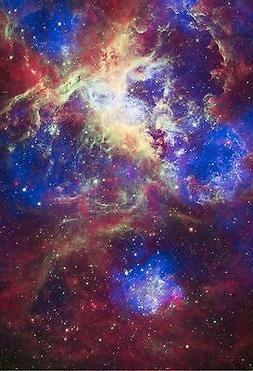 Space Poster of the Tarantula Nebula Fine Art Print